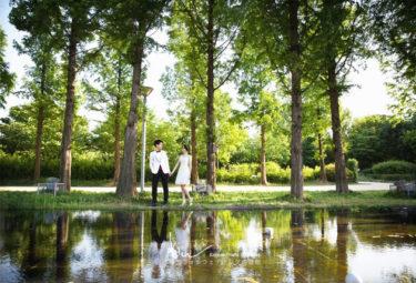【撮影レポート】野外公園撮影無料!!こんな素敵な写真が無料で!?本当にお得です!!(The Chungdam Studio)